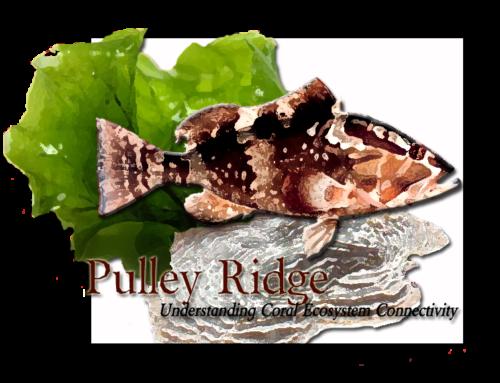 Pulley Ridge