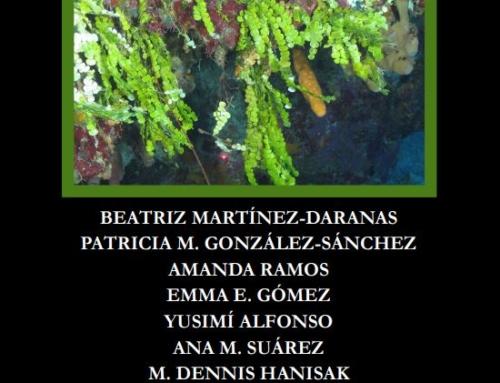 Cuba's Mesophotic Coral Reefs- Macro Algae Photo Identification Guide