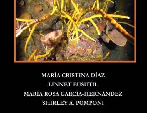 Cuba's Mesophotic Coral Reefs- Sponge Photo Identification Guide, Edition 1